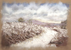 Prairie Snowscape Pastel Painting By Paula Winchester