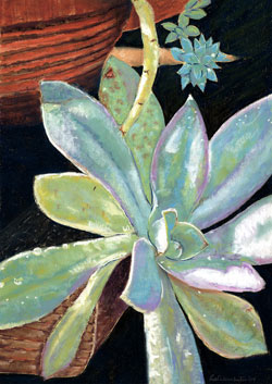Succulent Pastel Painting By Paula Winchester